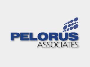 Pelorus Associates